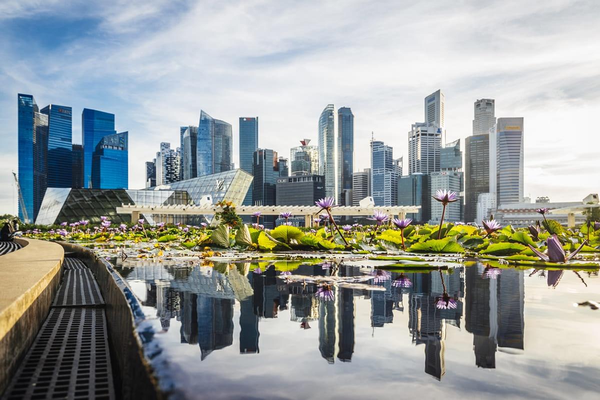 新加坡 航空券